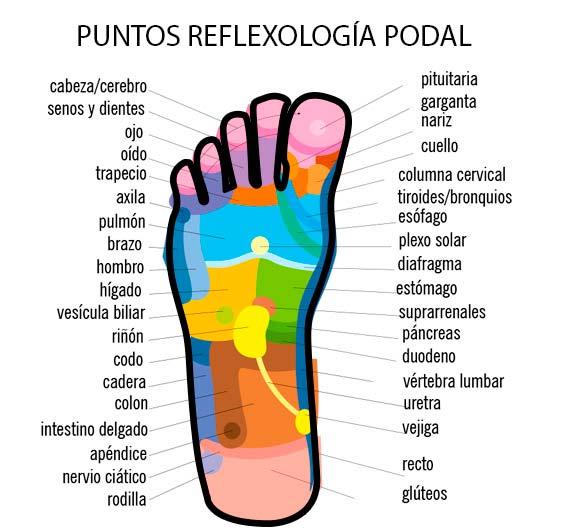 Puntos de reflexología en los pies